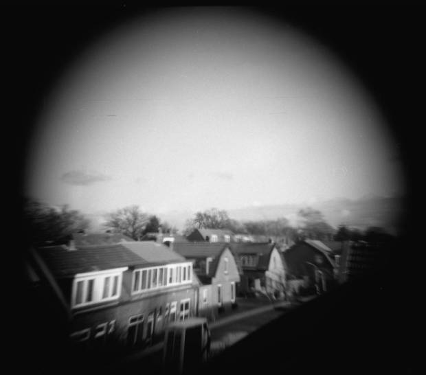 Holga 120 CFN with tele lens and Lomography Earl Grey 100 film.